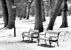 winter-1995198_640.jpg