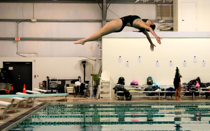 Congratulations to our Lady Dawg Dive Team!! Featured Photo
