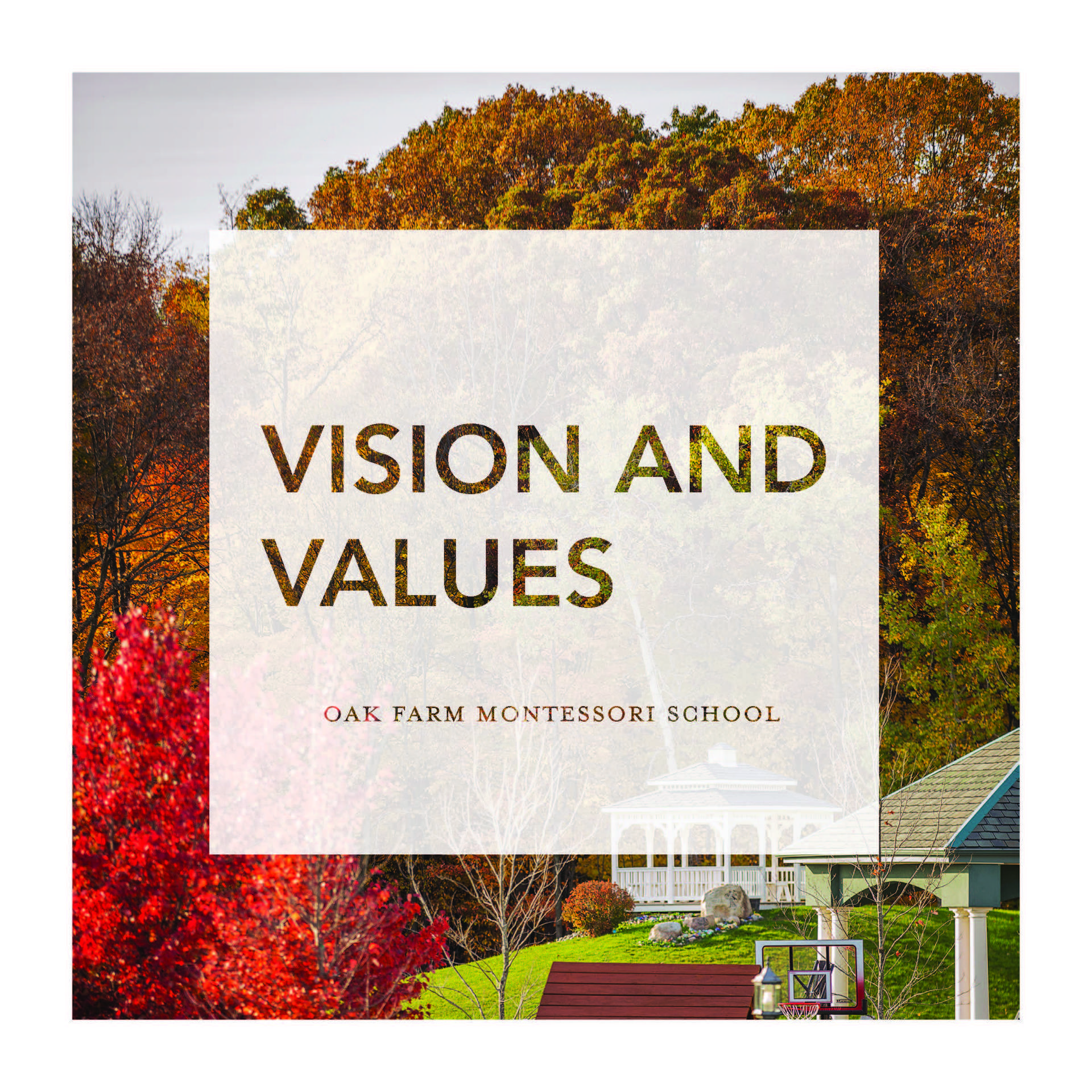 vision and values