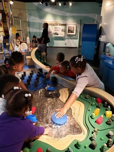 Pre-k field trip to the Shedd Aquarium