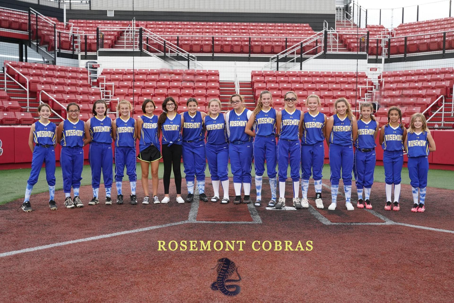 Cobra Softball