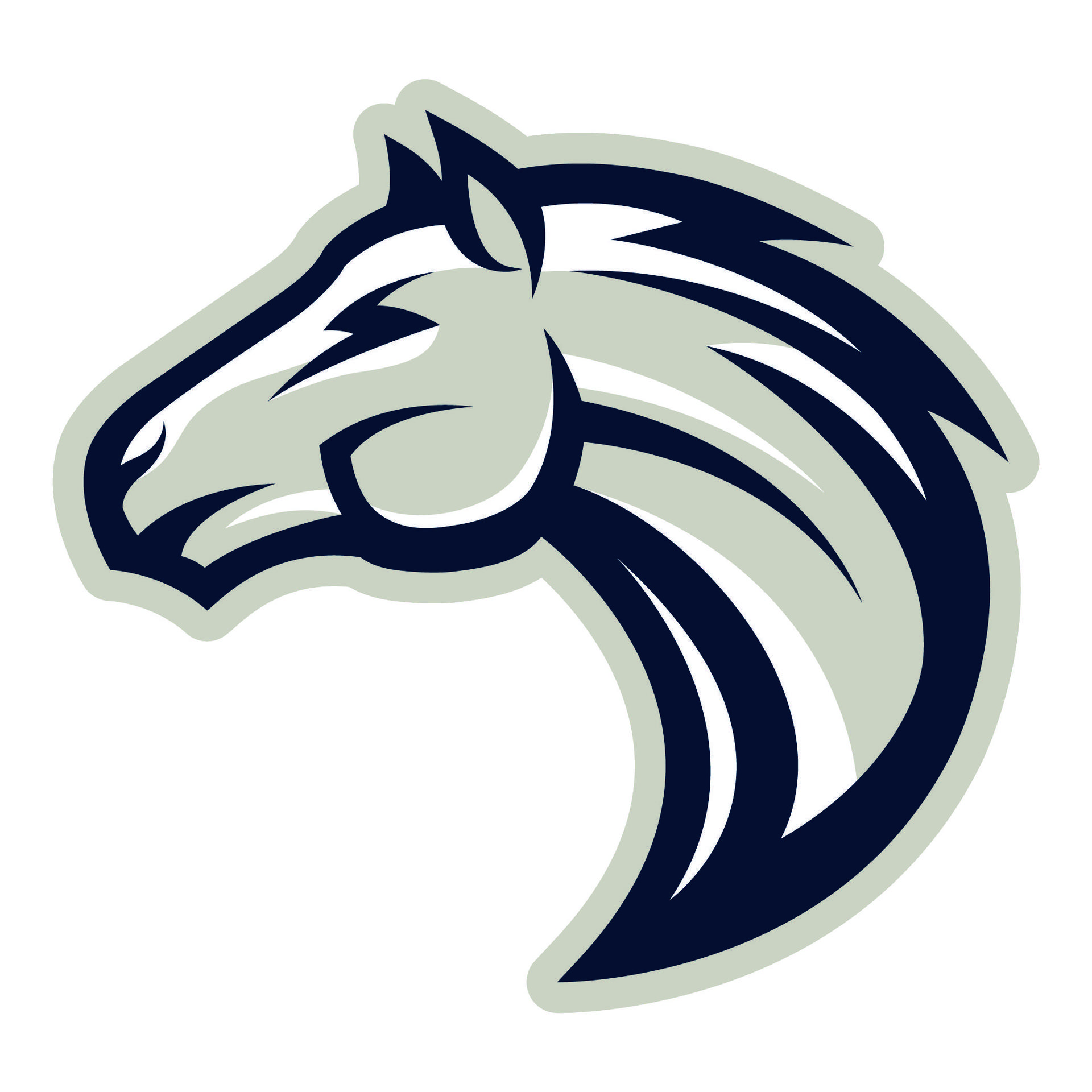 Mountainview Elementary Mascot