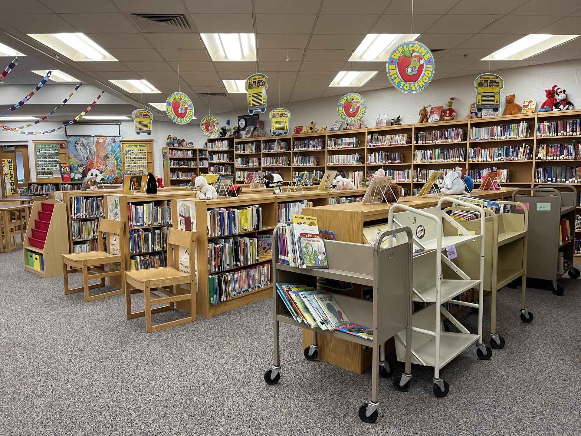Library-primary