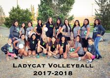 Volleyball 17-18