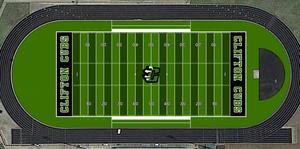 Cub Stadium Turf