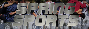 spring sports banner.png