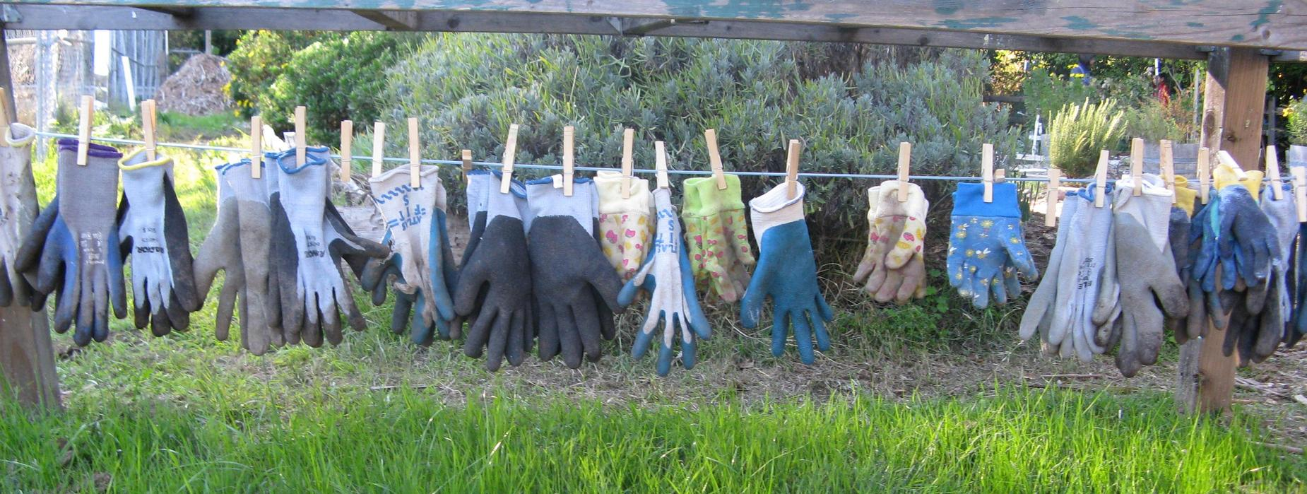 West Side School garden gloves hanging