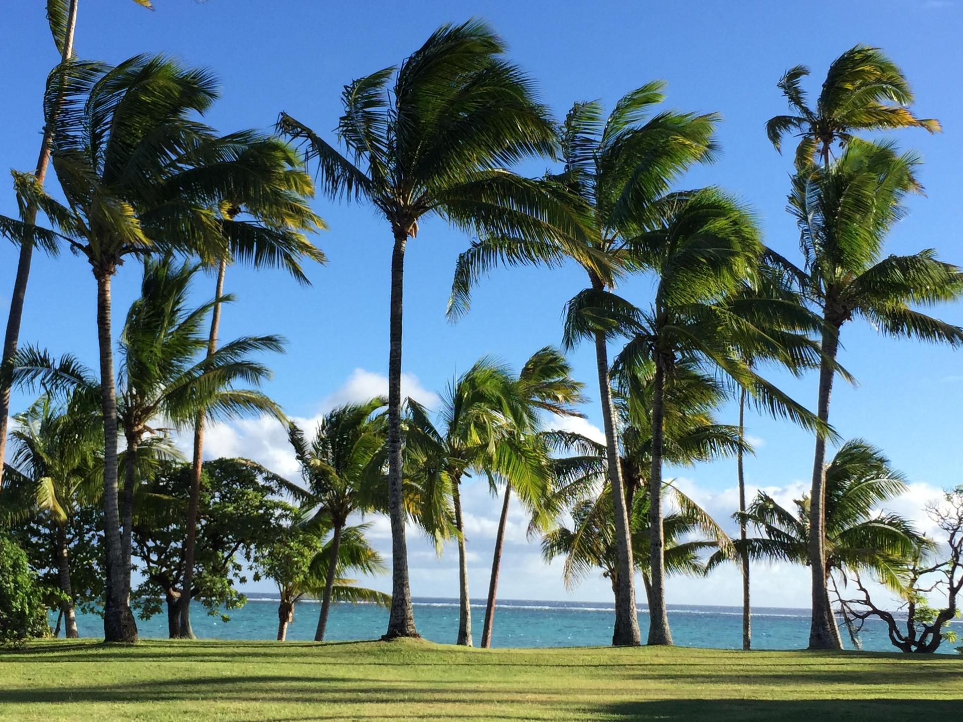 The Island of Fiji
