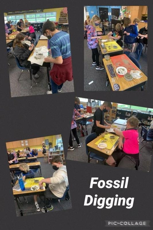 Students digging for fossils