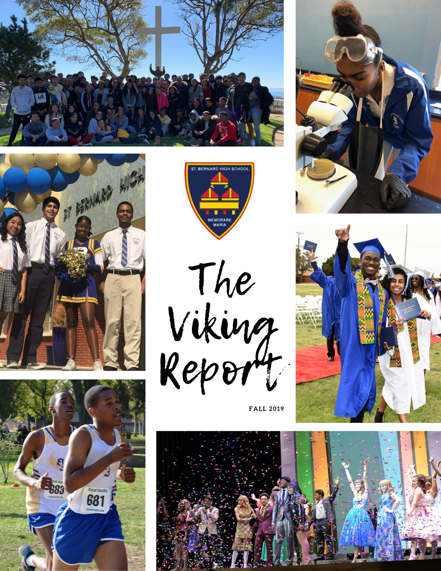 Viking Report