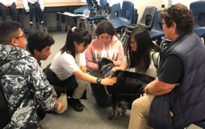CCA students destress with Sadie, a therapy dog.