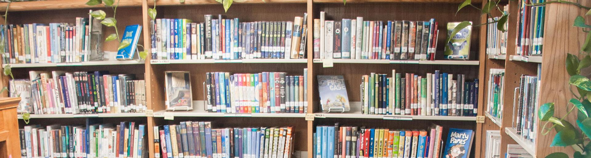 Shelves of library books
