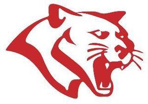 Tomball ISD Cougar Mascot