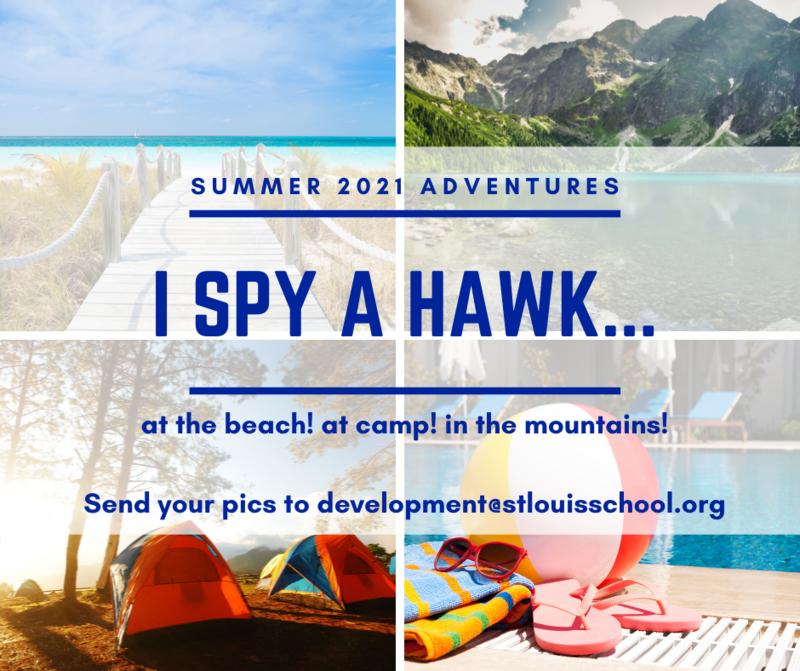 I Spy a Hawk! Featured Photo
