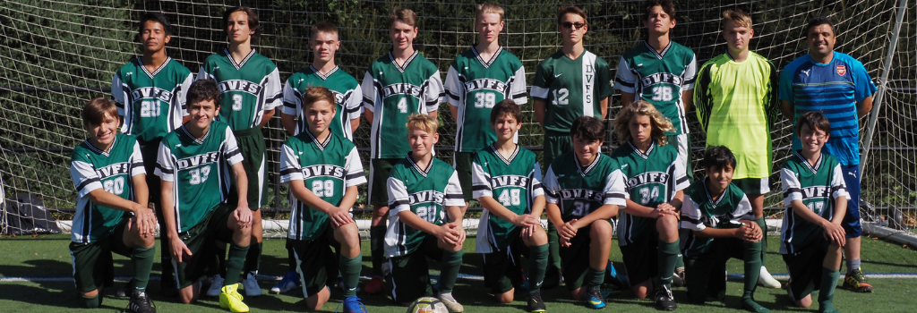 DVFriends JV Boys Soccer Team 2019