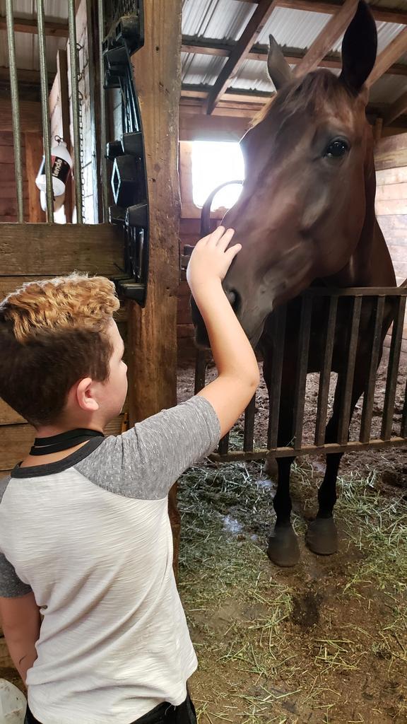 student petting horse