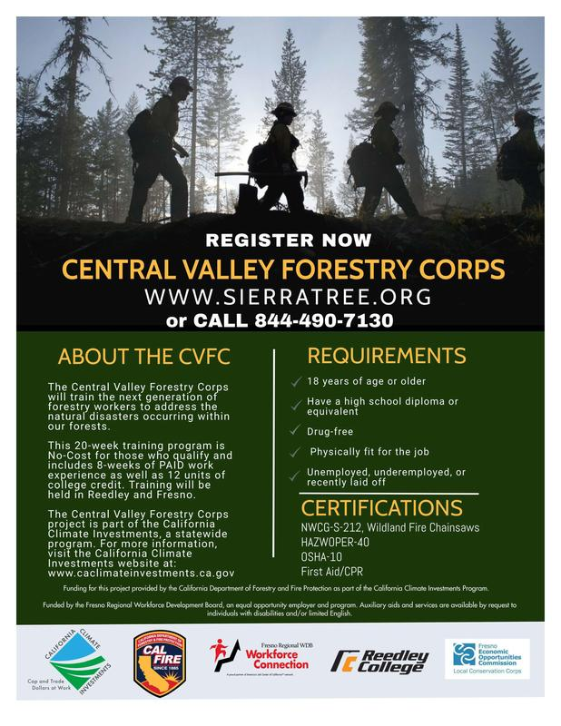 Central Valley Forestry Corps Flier