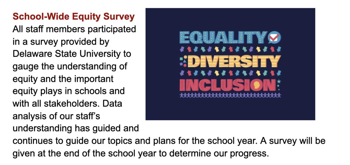 DEI School-wide Equity Survey