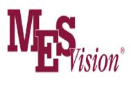 MES vision logo