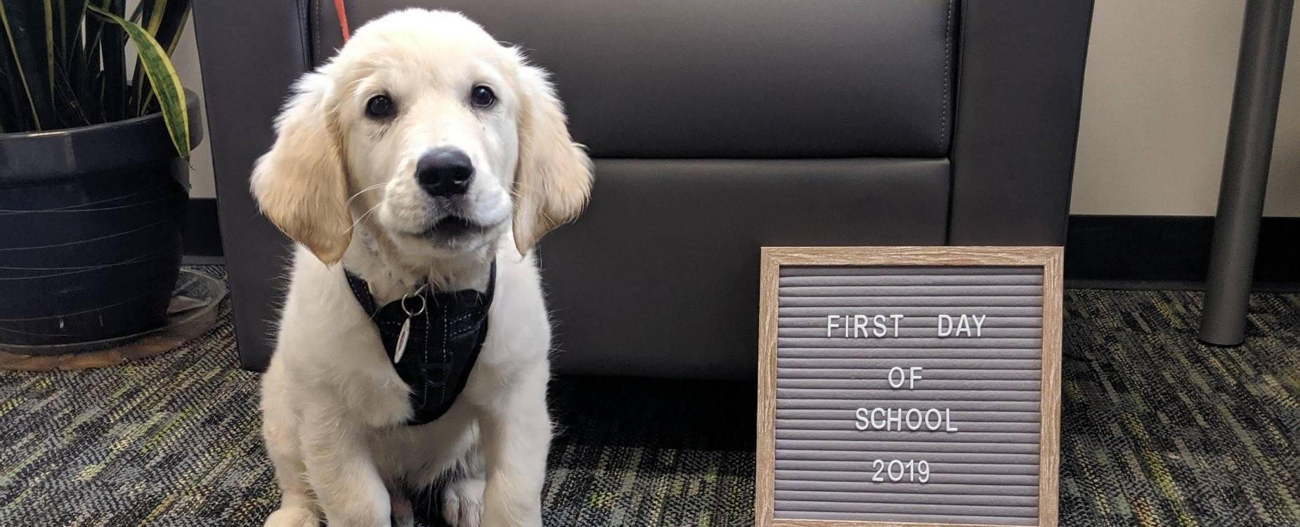 Winston's First Day