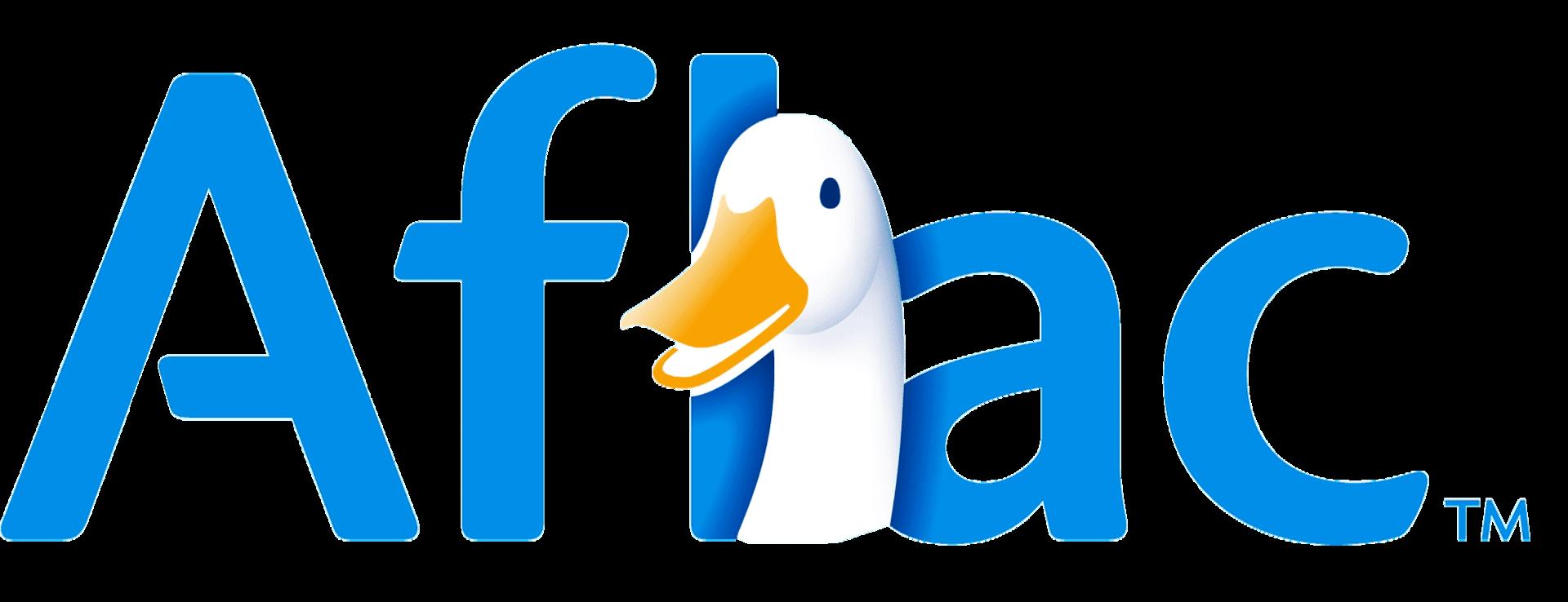 The head of a duck, cartoon style