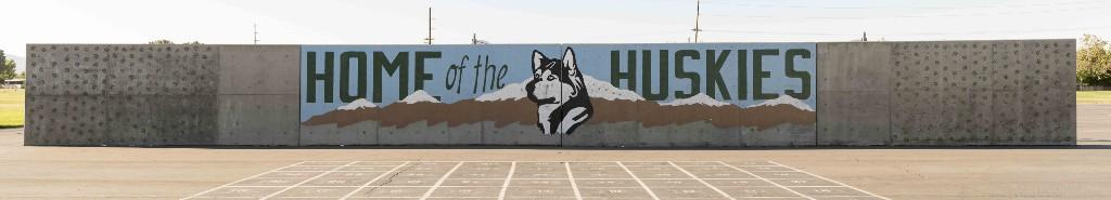 Home of the Huskies Painting