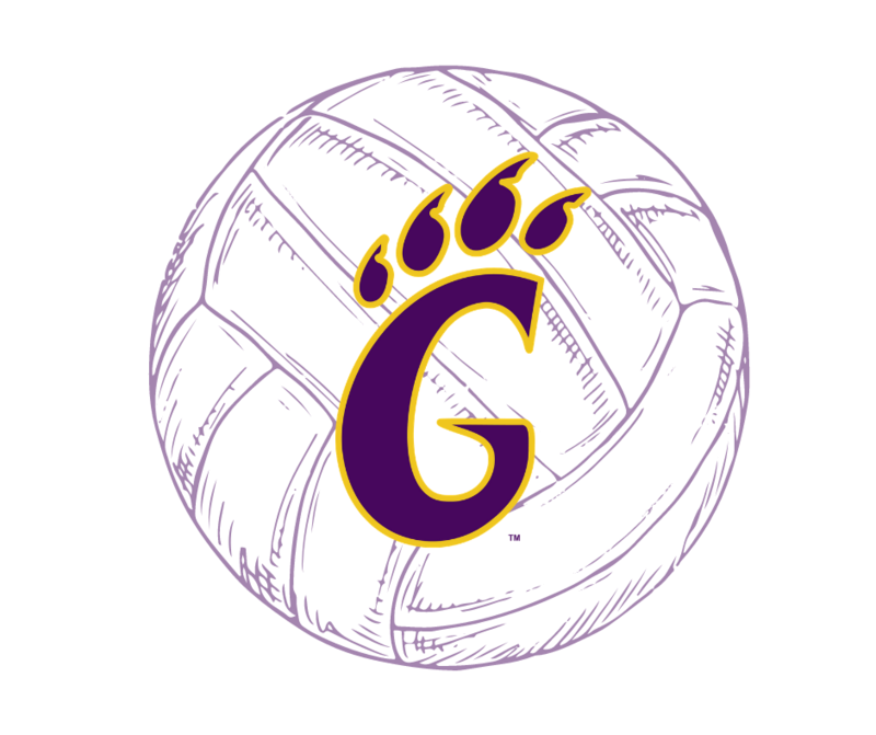 G claw volleyball