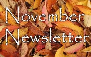 November Newsletter Featured Photo