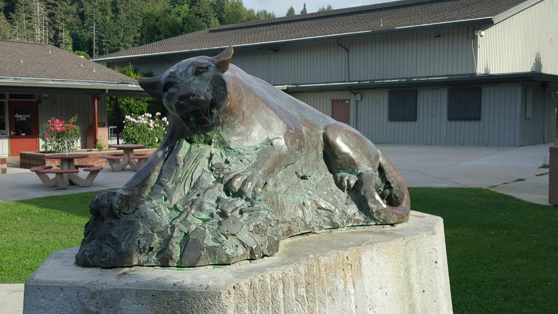Cougar Pic at High School