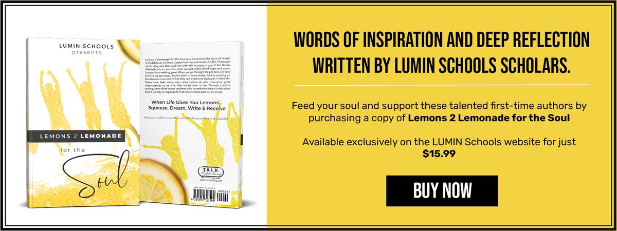 Lemons 2 Lemonade for the Soul Book for Sale
