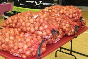 bags of onions