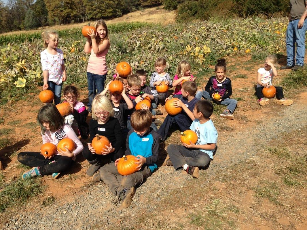 Expenditionary Learning, students with pumkins