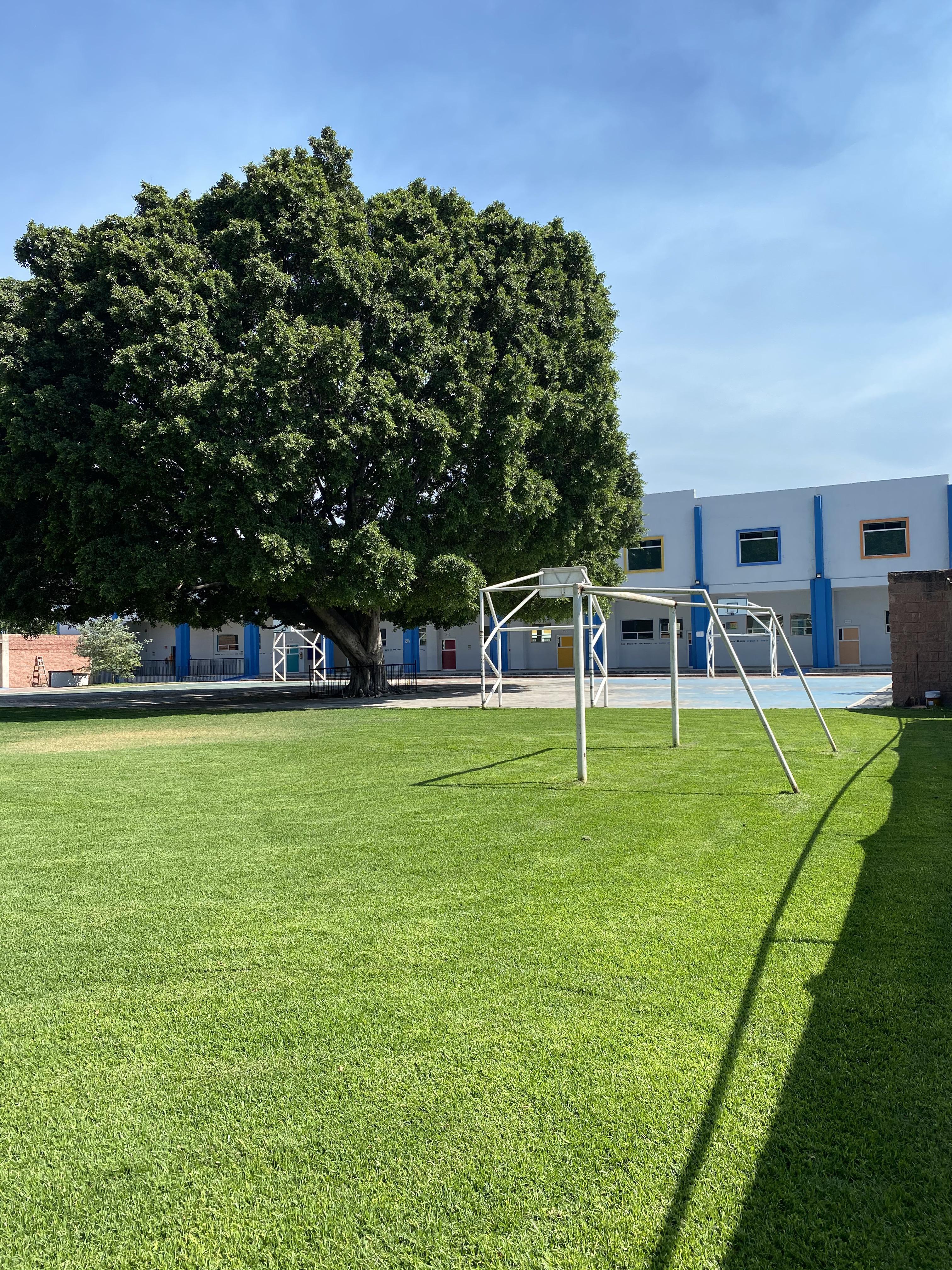 Colegio Marista Image