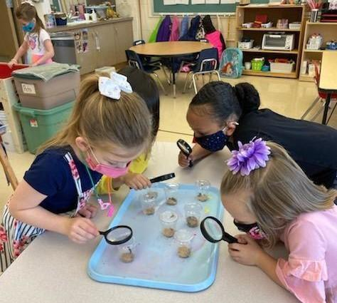 Free Preschool Screenings Featured Photo