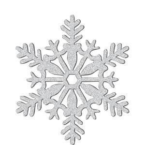 snow flake.jpg