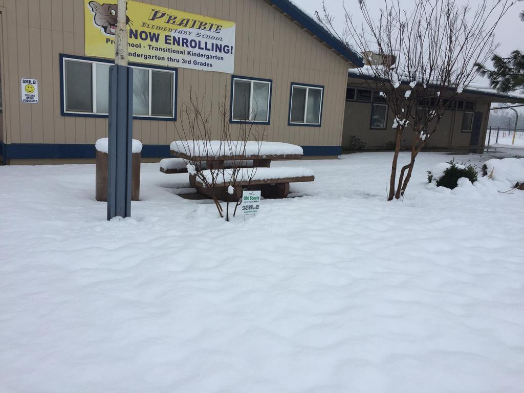 Snow Day Feb.13 Prairie School (North West)