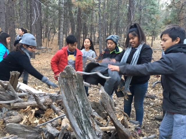 Campers building shelter