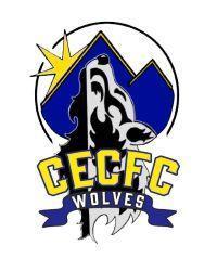 Wolf 2020 Logo