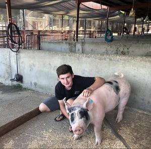 student with hog