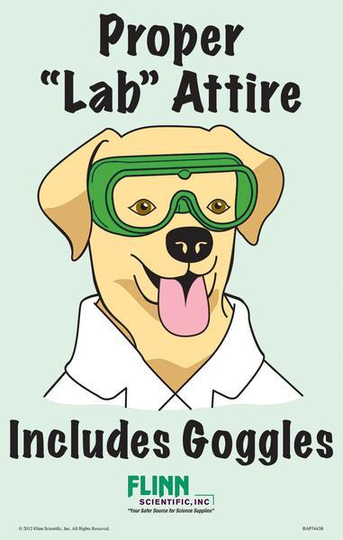 lab safety poster .jpg