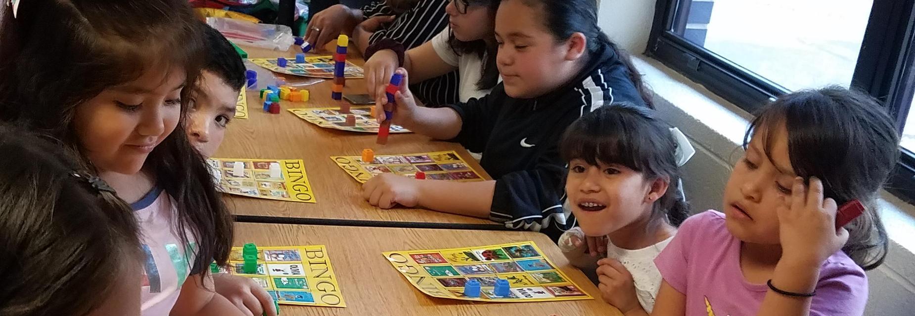 book bingo at literacy night
