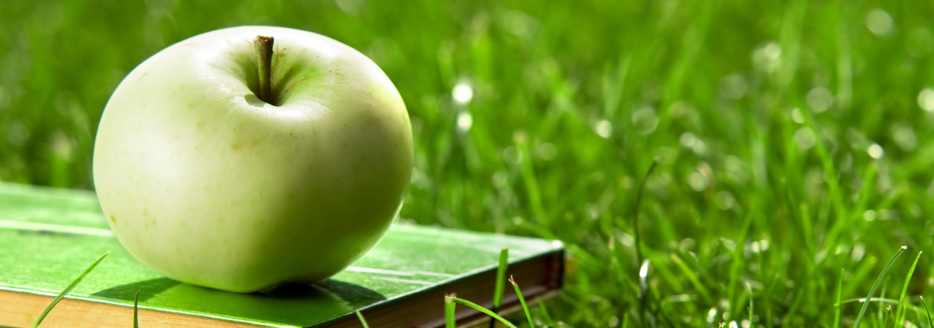 green apple and book