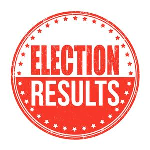Election Results Icon