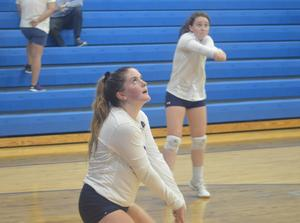 Alexis Lee volleyball