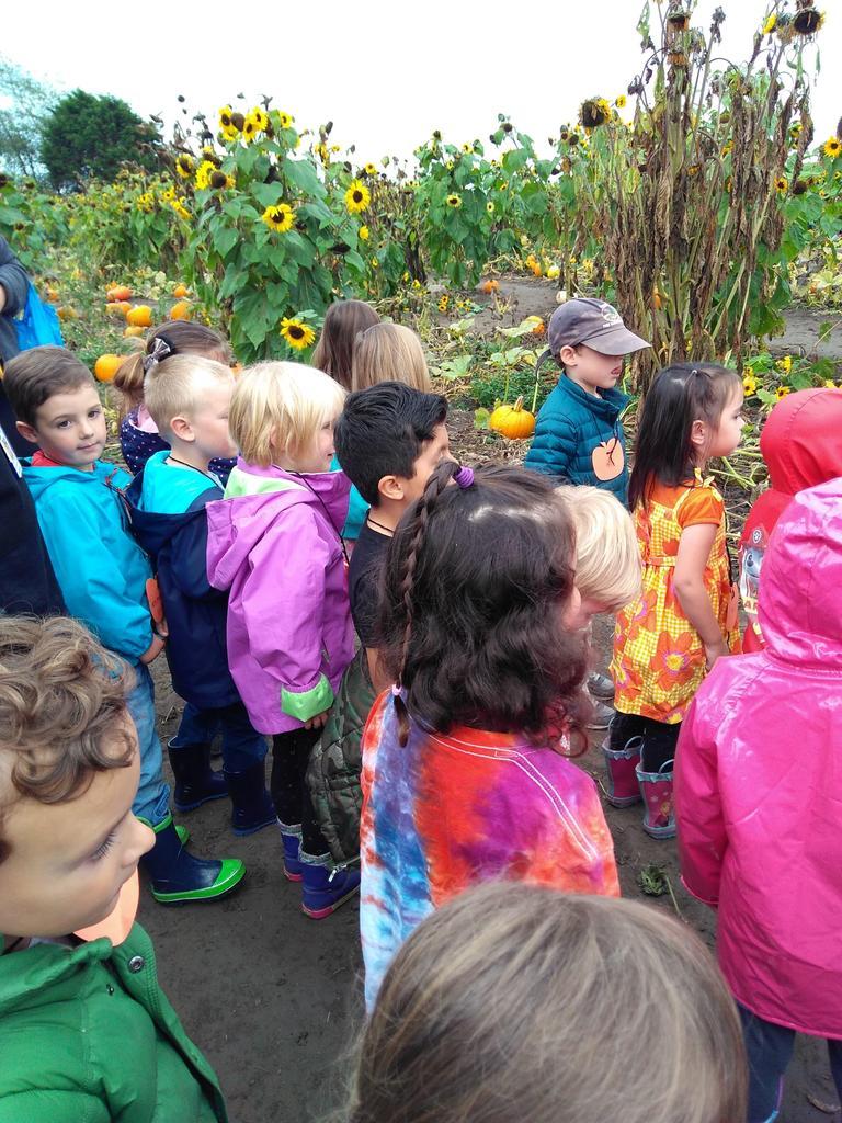 Children standing in a pumpkin patch