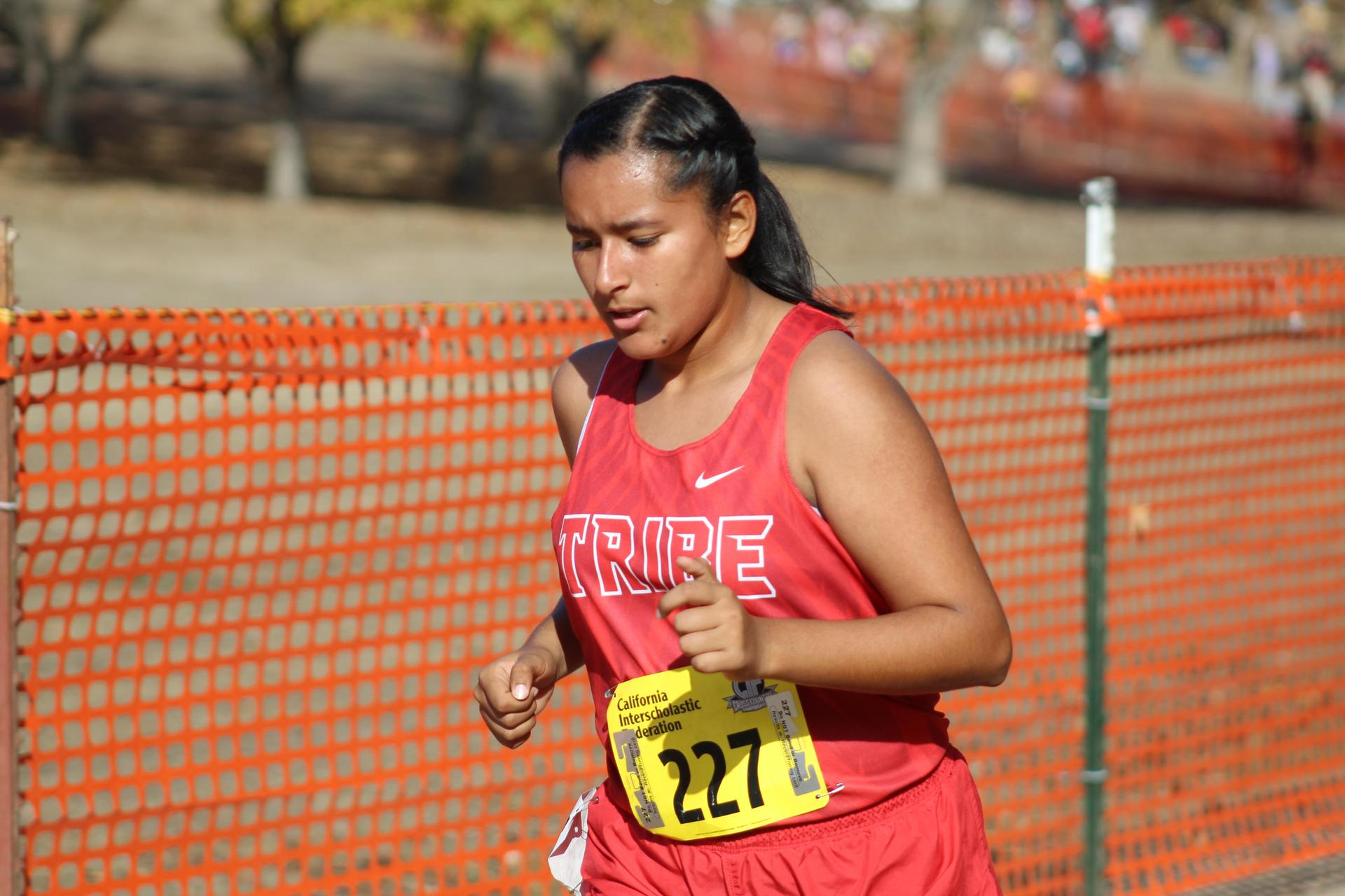 Chowchilla High School athletes running at the State Meet.Chowchilla High School athletes running at the State Meet.