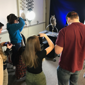 students photographing birds of prey
