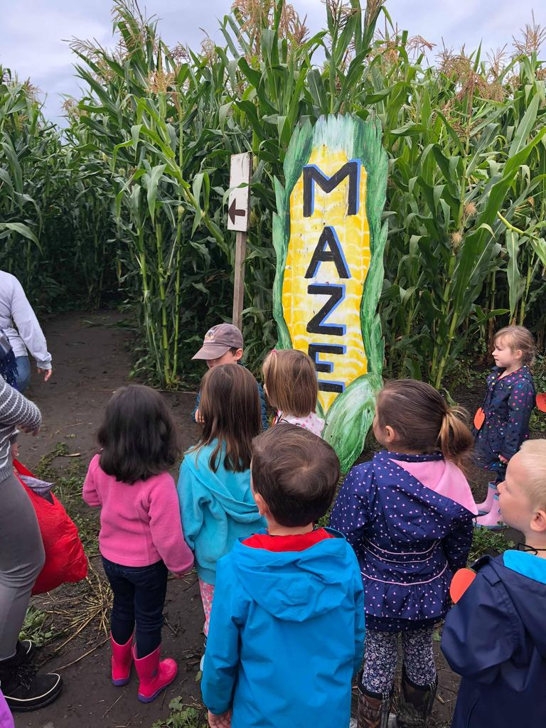 """Children standing infront of corn stalks with a sign that says """"Maze"""""""
