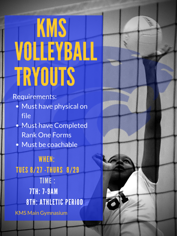 Volley Ball Tryouts Featured Photo