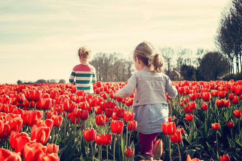 Kids in field of tulips